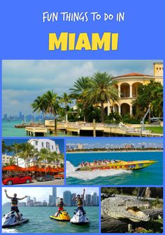 Top fun things to do in Miami on vacation - Everglades National Park, South Beach,Day Trips to the Bahamas, Cruises and Boat, Snorkeling, Segway and more activities and tours