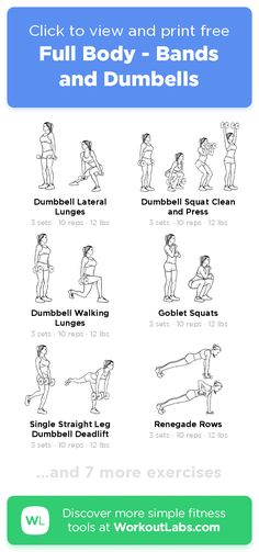 Full Body - Bands and Dumbells · Free workout by WorkoutLabs Fit