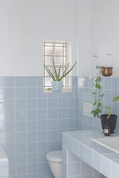 Teal and Brown Bathroom Ideas . Teal and Brown Bathroom Ideas . Pin by Angie King On Building Our Home Pastel Bathroom, Pastel Room, Bathroom Paint Colors, Brown Bathroom, Pastel Blue, Modern Bathroom, Small Bathroom, Pastel Colors, Bathroom Installation