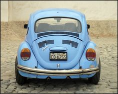 VW Beetle...Punch buggy, no punch back!
