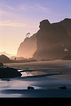 Shi Shi Beach, Olympic National Park, Washington State