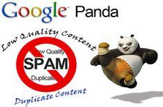Kiến Thức SEO: Nhận biết website bị ảnh hưởng bởi Panda hoặc Peng...