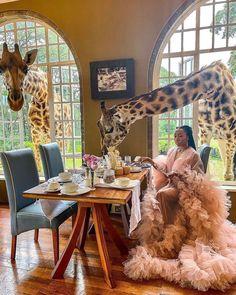 Tanzania, Kenya, Private Safari, Explore Travel, East Africa, 12 Days, Natural Wonders, Scenery, Wildlife