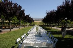 "Willowstone at the Vines ""Kings Table"""