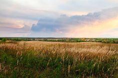 Russian Field Photograph by Sergey Nosov #SergeyNosov #Photography #ArtForHome #FineArtPrints #InteriorDesign