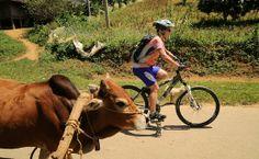 AFAR.com Highlight: SpiceRoads Cycle Tours, Vietnam