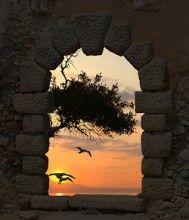 (via Greek sunset by Papadimitriou | Weather Underground)