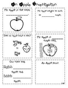 An Apple Investigation Activity - Julie Lee - TeachersPayTeachers.com