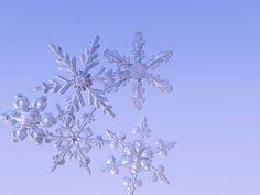 Digital Snowflakes by Raymond Cassel, via Behance