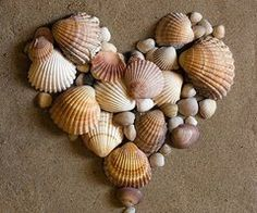 This would go with my sea shell letter!!