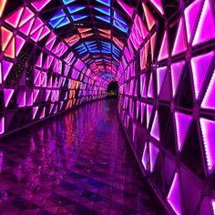 Vaporwave Room: Pretty lights at Tokyo Dome City Cyberpunk Aesthetic, Purple Aesthetic, Bedroom Wall Collage, Photo Wall Collage, Vaporwave, Pompe A Essence, Nightclub Design, Tokyo Dome, Decorating Rooms