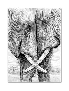 Elephants in pencil and charcoal 5 x 7 Giclee. Togetherness Elephants in pencil and charcoal 5 x 7 Giclee. Pencil Drawing Tutorials, Drawing Ideas, Drawing Tips, Pencil Sketching, Drawing Drawing, Afrique Art, Drawing Techniques, Pencil Art, Animal Drawings