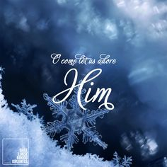 O Come Let Us Adore Him  #Kerst  http://www.dagelijksebroodkruimels.nl/o-come-let-us-adore-him/