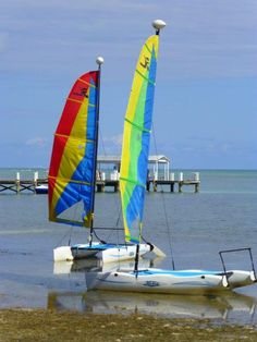 Watersports are very popular at Cheeca Lodge.