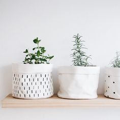 Our mini canvas buckets are made from 100% cotton canvas and are great for holding herbs and other small items. They are R90-R100 each. See them on our site (link in bio).