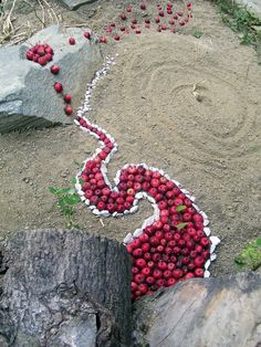 Andy Goldsworthy~ I'm intrigued by land art/environmental art. I haven't created it really, but I find this piece resonates with my doodles and visual language.