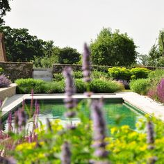 We built this pool and hot tub within a restored early 19th Century walled garden within the curtilage of a Grade 1 country house in Somerset. The landscaping was designed by the internationally acclaimed garden designer @tomstuartsmith ..... ..... #rmouldingandco #heritage #builders #restoration #renovation #conservation #beautiful #swimmingpool #landscape #architecture #gardens #design #luxury #countryhouse #Victorian #architecture #gardens #design #somerset