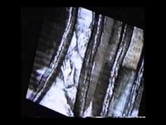 karate video for fine art Karate Video, Fine Art, Pictures, Visual Arts