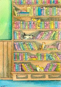 Cats on shelves. Nicole Wong