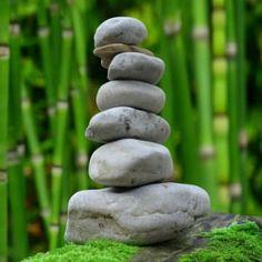 Amazing natural weight-loss secrets – Vital Chi Wellness ⋆ The Stuff of Success Facial Therapy, Organizing Hacks, Weight Loss Secrets, Self Discovery, Medical Marijuana, Cannabis, Healthy Alternatives, Health And Wellness, Mental Health