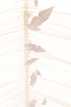 We made paper cranes to hang down the center of the marquee! They looked amazing! #DIY #wedding #weddingphotography www.folegaphotography.co.uk