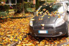 I love Italy , autunno ...