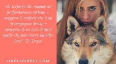Ho scoperto che, quando sei profondamente turbata, è maggiore il conforto che ti da la compagnia devota e silenziosa di un cane di tutto quello che puoi trarre da altre fonti.' (D. Day)