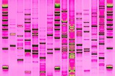 DNA Art from yonderbiology.com