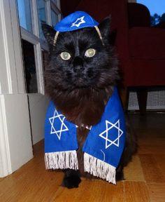Shalom Winnie