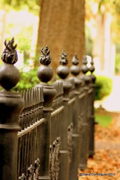 The wrought iron fence has been at the Inn for many years and the guests always look for it when arriving at the Inn.
