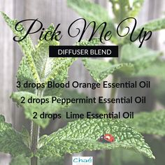 Pick Me Up Diffuser Blend 3 drops Blood Orange Essential Oil 2 drops Peppermint Essential Oil 2 drops Lime Essential Oil Lime Essential Oil, Organic Essential Oils, Drop, Pick Me Up, Diffuser Blends, Saving Money, Essentials, Pure Products, This Or That Questions