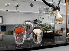 Nature, Home Decor, Corning Glass, Naturaleza, Decoration Home, Room Decor, Nature Illustration, Home Interior Design, Off Grid