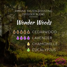 Immune System Boosting Essential Oil Diffuser Blends - Natural Remedies When You're Sick - Essence Dreams Essential Oils For Colds, Citrus Essential Oil, Essential Oil Perfume, Essential Oil Diffuser Blends, Chamomile Essential Oil, Aromatherapy Diffuser, Helichrysum Essential Oil, Stem Challenge, Cedarwood Oil