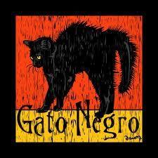 Black cats........<3