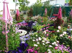 Gardeners World Live, NEC, Birmingham : Grows on You