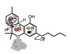 THC molecule Funny, but not for school...