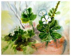 Periwinkle Flowers, Watercolor Paintings, Art, Art Background, Water Colors, Kunst, Performing Arts, Watercolour Paintings, Art Education Resources