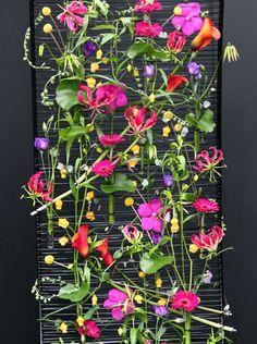 Flowers on grid, flower wall. sophie-watton-bfa-tatton-flower-show
