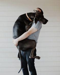 big dog baby