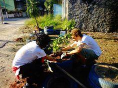 Pela quarta vez um grupo se reúne para cuidar dos canteiros e plantar mudas em pneus reciclados no local