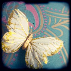 A still life photographic print of a beautiful glittery gold and white feather butterfly on a teal background. Signed on the back. Pretty vintage style nursery decor.  Title: Butterfly  This vintage inspired print has been taken using a technique called ttv (through the viewfinder). I use an original 1940s camera ... so the dust, scratches, blur and flaws are all part of the original image.  The image provided here is of reduced resolution. The print you receive will be of higher resolution…