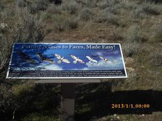 PT MARCH 2015 KUNA IDAHO BIRDS OF PREY AREA. DON'T BELIEVE THE TIME STAMP. I'M GOING TO SHUT THAT OFF.