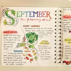 I almost forgot to upload my pages for Full spre. I almost forgot Garden Journal, Nature Journal, Journal Pages, Bullet Journal Cover Ideas, Journal Covers, Journal Inspiration, Journal Ideas, Nature Study, Journaling