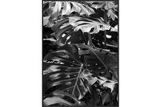 Bilde Soil II 50x70 cm | Chilli.no