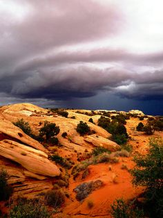 The San Rafael Swell, Utah - growing up, this was my second home; we would camp there so often. I need to go back. A geologist's heaven! Amazing variety of rocks! Wild horses, Native American artifacts, and plenty of slick rock to climb!
