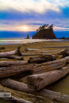 Drift Logs by sallysgood  Beach Cloudy Coastline La Push Pacific Northwest Purple sky Seascape USA Washington State beautiful