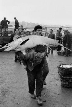 Galata (1964) #istanbul #istanlook #birzamanlar