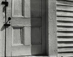 Edward Weston. 'Whit