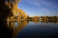 Washington Park in Denver.  Large garden areas.  Lily pond, lakes, bridges, docks, open field areas.