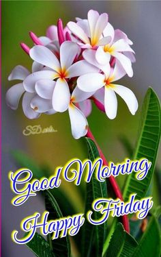 Good Morning God Quotes, Good Morning Happy, Good Friday, Quotes About God, Morning Images, Graphics, Gud Morning Images, Be Nice, Graphic Design